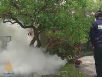 MAE: Risc de infestare cu febra dengue in Malaezia. Se recomanda purtarea de maneci si pantaloni lungi