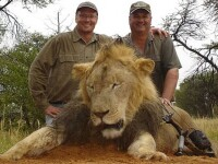 Zimbabwe renunta sa il judece pe dentistul care l-a ucis pe leul Cecil.