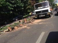 Scandal in jurul copacilor taiati in Capitala. Autoritatile spun ca erau