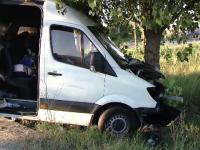 Trei pasageri au ajuns in spital, dupa microbuzul in care se aflau a intrat in copac. Ce a incercat sa faca soferul
