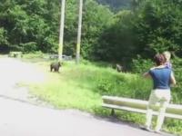 Imagini uimitoare, surprinse pe Transfagarasan. O femeie cu un copil in brate, filmata in timp ce hranea doi pui de urs