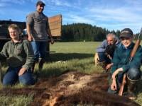 Un copil de 11 ani din Alaska si-a salvat familia din ghearele unui urs infometat. A impuscat animalul de 4 ori