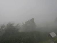 Alertă meteo. Ploi torenţiale, însoţite de vijelii şi grindină până vineri
