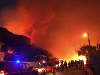 Europa, cuprinsa de incendii si seceta din cauza temperaturilor ridicate. Papa a cerut inchiderea fantanilor de la Vatican