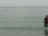 Imagini spectaculoase pe o plajă din Constanța