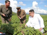 Kim Jong-un a preferat să viziteze o plantație de cartofi în loc să se întâlnească cu Mike Pompeo