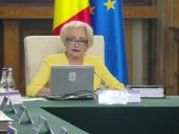 """Mesaj critic pentru Dăncilă: """"Votați, poate se mai deconcesionează lucrurile"""""""