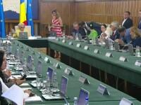 Guvernul nu a discutat despre amnistie sau grațiere în ședința de marți. O nouă ședință de Guvern va avea loc joi