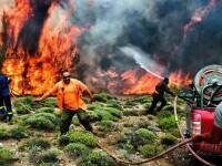 """Incendiile din Grecia. Sunt """"indicii serioase"""" că focul a fost pus intenționat"""