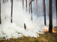 Alertă lângă Berlin, din cauza unui incendiu de pădure. Locuitorii ar putea fi evacuați. FOTO