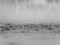 Cum va fi vremea în weekend. Zonele în care sunt anunţate ploi
