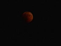 Eclipsa de lună de pe 27 iulie 2018. Coadă la Observatorul Astronomic