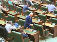 Proiectul privind amânarea dublării alocaţiilor pentru copii, respins de Senat