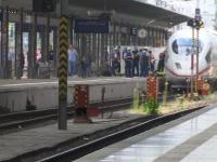 Clipe de groază în Germania. O mamă și copilul ei, împinși în fața trenului. VIDEO