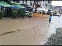 Străzi inundate și copaci căzuți, după ploi torențiale în țară. Canalele nu au făcut față