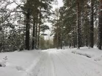 Caniculă la Polul Frigului. De la 38 de grade Celsius, locuitorii s-au trezit cu zăpadă