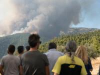 Incendii de vegetaţie în Grecia. Flăcările s-au extins rapid din cauza rafalelor de vânt