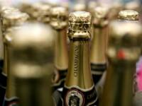 """Vânzările la șampanie au scăzut cu peste 75%. """"O să facem oțet sau lăsăm strugurii să putrezească"""""""