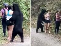 VIDEO. Trei turiste, prinse de un urs. Una dintre ele a făcut un selfie