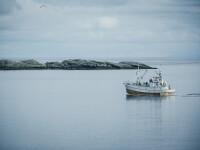Fenomen macabru pe coasta Japoniei. Cadavre ale nord-coreenilor în bărcile de pescuit