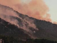 Autoritățile elene continuă lupta cu incendiul uriaș de vegetație izbucnit în urmă cu câteva zile
