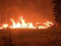 Cel mai mare incendiu din California își generează propriul climat. Ce sunt norii \
