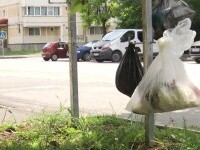 Motivul pentru care în Făgăraș gunoaiele se agață în cui pe stradă