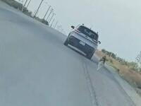 Video. Momentul în care un pui de husky este părăsit pe marginea unui drum