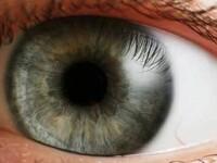 Aveti senzatia de pete pe ochi sau panze de paianjen? Mergeti la oftalmolog