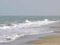 Terifiant. Plecati la plaja, au gasit bratul unei femei ingropat in nisip