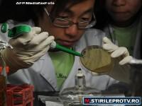 Specialisti: Bacteria ucigasa este rezistenta la antibiotice. Romania, ocolita de epidemie
