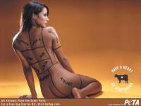 Primul site .XXX cu scop nobil. PETA strecoara mesaje subliminale printre clipurile pentru adulti