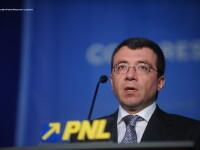 Voicu: Anuntul lui Basescu e populist, la finalul revizuirii va exista un referendum mai important