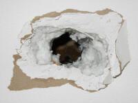 Obiectul misterios care i-a cazut prin acoperis unui barbat din Statele Unite.