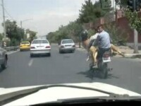 Moment amuzant pe o strada din Iran. Doi barbati au luat niste pasageri inediti pe motoreta