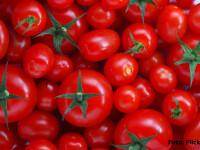 Rosiile cherry incep sa impinga din farfurie tomatele traditionale. Avantajele care i-au incantat pe agricultori