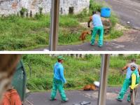 Ce face un angajat de la salubritate cand loveste un caine cu masina de gunoi. Gestul sau inuman l-a costat slujba