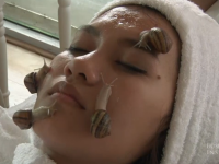 Ritual SPA bizar practicat in Thailanda. Cum sunt folositi melcii pe post de tratament anti-imbatranire