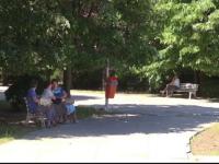Parintii care si-au scos copiii la plimbare intr-un parc din Galati au privit ingroziti ce se intampla: A trecut pe langa noi