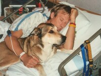 Povestea lor e incredibila: un caine a murit de cancer dupa ce un deceniu a stat langa stapanul sau, si el bolnav de cancer