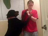 VIDEO Momentul emotionant in care un caine isi opreste stapana bolnava de sindromul Asperger in timpul unei crize violente