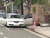 Barbat cu un arsenal intreg in masina, arestat in California. Suspectul mergea spre Festivalul Gay Pride din Los Angeles