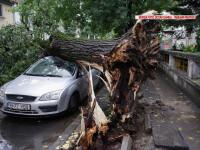 30 de minute de ploaie au dat peste cap Bucurestiul. Trafic paralizat, metrou inundat si copaci prabusiti peste masini