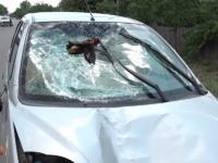O femeie a fost lovită mortal de o mașină, după ce a traversat prin loc nepermis