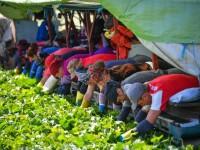 Zeci de zboruri cu muncitori români, aşteptate în UK. Apelul ambasadorului Dan Mihalache