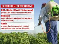 UE, reclamată din cauza interzicerii pesticidelor. \