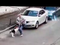 Amenda primită de stăpânul Amstaff-ului care a atacat un câine pe stradă. Femeia rănită este revoltată