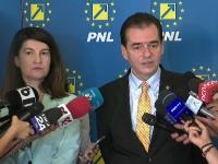 """Scandal în PNL din cauza noii şefe de la Capitală. Avertizări cu """"crocodili"""" și """"șobolani"""""""