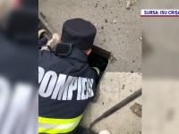 Momentul în care pompierii din Oradea salvează un boboc de rață căzut în canalizare