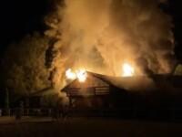 Cai de curse de zeci de mii de euro, la un pas să ardă de vii într-un incendiu. Cine i-a salvat